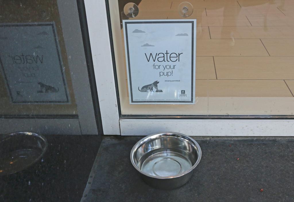 Umpqua Bank, reinventando la oficina bancaria: agua para los perritos de los clientes